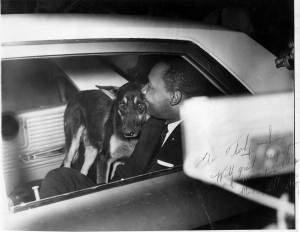 MLK---dog-St--Augustine-jpg (1)
